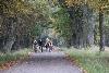 Tour-de-Brdy-Sparta-(255).jpg