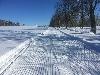 Ski-teskov-Alej.jpg