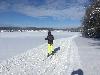 mat-myto-ski.jpg