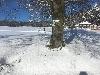 Ski-teskov-Myto-Teskov-Hrbitov.jpg