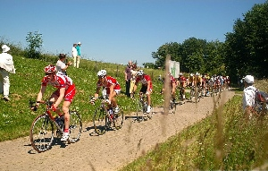 Silniční závod Hohenheim u Stuttgartu kořistí pro Schumachera, Okrouhlický pátý